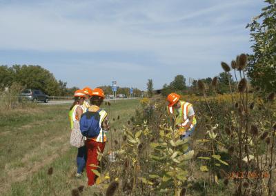 6. Citizen Science: Monarch and Milkweed Awareness
