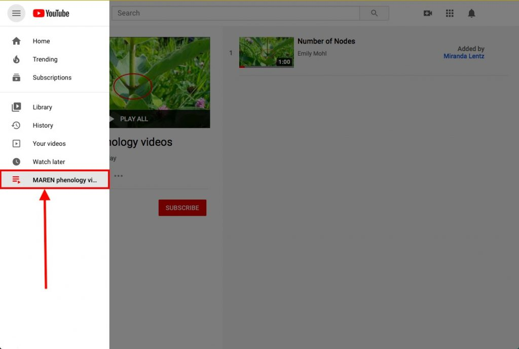 Step 3 to upload YouTube content: tag instructions