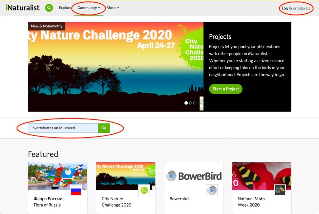 Step 1 for iNaturalist content upload