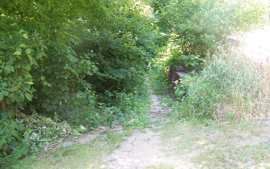 Well-Worn Footpath