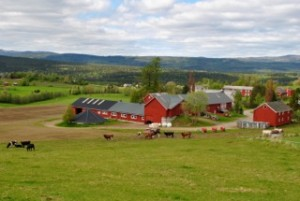 The beautiful rolling hills and farmland of Snåsa, Norway. (Photo credit: Siri Smithback '12)
