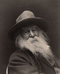 George C. Cox's photograph portrait of Walt Whitman